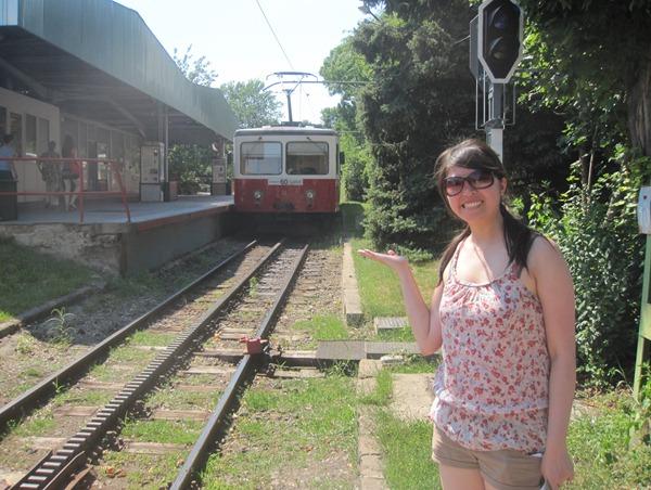 Cogwheel Railway Budapest Hungary