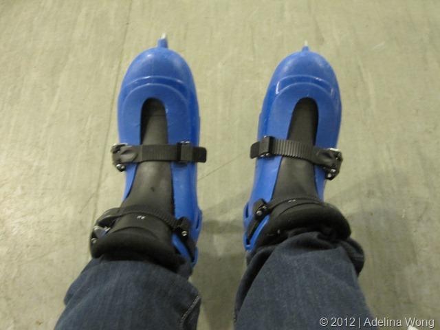 Terrible skates