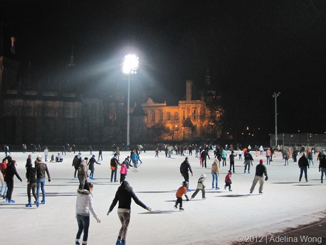 The other half of the rink